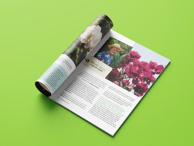 publications1-400x300.jpg